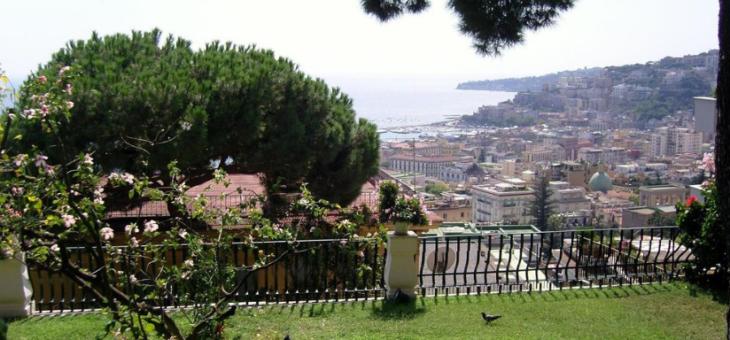 Impresa di giardinaggio e manutenzioni a Napoli: tutte le info